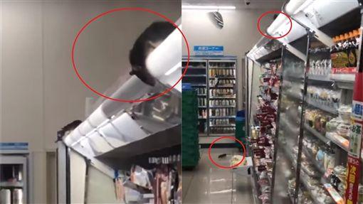 老鼠,東京,澀谷,便利商店(圖/翻攝自YouTube)