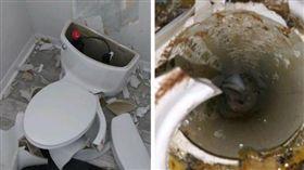 嚇壞老夫婦!神雷打中化糞池 廁所馬桶「恐怖爆炸」碎滿地(圖/翻攝自A-1 Affordable Plumbing inc 臉書)