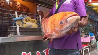 石門水庫有地震魚?漁民驚30年首見