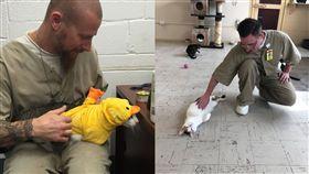 把受刑人變貓奴!美國監獄引進貓貓典獄長 犯人全都被融化 圖/翻攝自Twitter