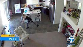 美國加州發生一起保母虐狗事件。(圖/翻攝自ABC7 News)