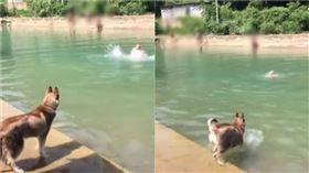 主人溺水。(圖/翻攝自翻攝自抖音APP用戶「1707495339」)