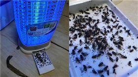 捕蚊燈。(圖/翻攝自《Costco好市多 商品經驗老實說》FB)