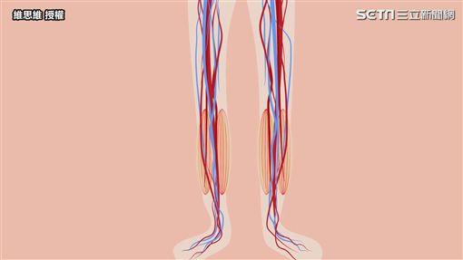 ▲需要靠下肢肌肉發達的小腿來幫忙。(圖/維思維  授權)
