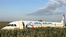 俄羅斯,客機,玉米田,迫降,奇蹟。(圖/翻攝自dailymail)
