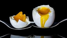 蛋。 (圖/翻攝自pixabay)