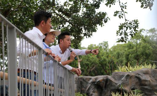 新竹動物園年底開放  蔡總統造訪長臂猿棲地總統蔡英文(右2)16日在新竹市長林智堅(右)陪同下,到預計於年底完工重新開放的新竹市立動物園,造訪長臂猿的棲地。中央社記者魯鋼駿攝  108年8月16日