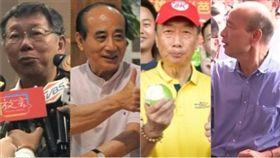 柯文哲,郭台銘,王金平,韓國瑜,組合圖
