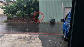 垃圾,兔子,爆怨公社,看錯,下雨,馬路