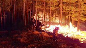 西班牙度假勝地大加納利島今日野火肆虐,無法控制,迫使許多人撤離,還有百人受困文化中心。因火勢極猛烈,消防灑水機也無法靠近,此次災難被稱作「環境悲劇」。(翻攝自推特)