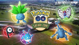 Pokémon GO,訓練家,Safari Zone,新北市政府,Pokémon GO Safari Zone New Taipei City,寶可夢 圖/新北市觀旅局