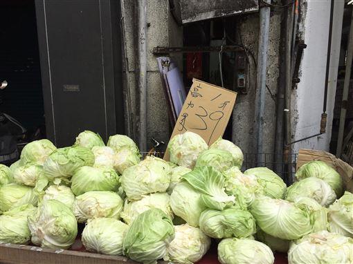 台北果菜批發市場,蔬菜交易,高麗菜,菜價,受影響(圖/中央社)