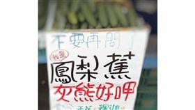 鳳梨蕉,台灣,水果,新品種,姊夫,龜背竹