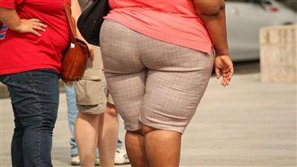 想遠離肥胖?營養師:不用一直避脂肪