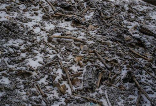 喜馬拉雅山,路普康湖,Roopkund Lake,骷髏湖,骸骨(圖/翻攝自推特)