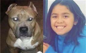 美國,女童,埃爾南德斯(Emma Valentina Hernandez)遭比特犬咬死(合成圖/翻攝自臉書、推特)