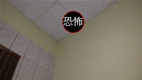 蛋黃派,天花板,老鼠,壁虎,靈異公社,鬼