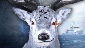 白鹿,颱風,海巡署,警示文(翻攝自海巡署臉書)