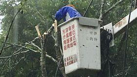白鹿颱風,台電,搶修停電  圖/台電提供