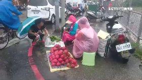 風雨中賣菜1100