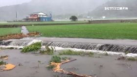 V池上米淹水1530