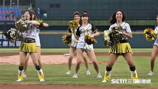 阪神虎啦啦隊女孩「Tiger Girls」來台灣。(圖/記者王怡翔攝影)