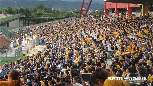 洲際棒球場熱情球迷。(圖/記者王怡翔攝影)