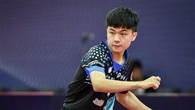 ▲林昀儒在捷克公開賽。(圖/取自ITTF)
