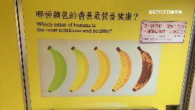 香蕉車挨批1200
