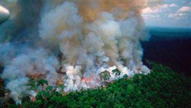 巴西,運輸機,亞馬遜雨林,野火,協助撲滅(圖/翻攝自推特)