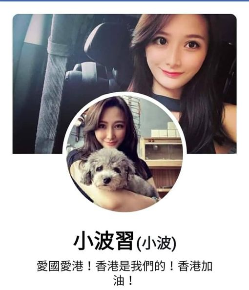 反送中,正妹遭港警毆打,小波習(圖/翻攝自香港臉書社團)