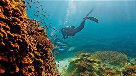 大堡礁。(圖/翻攝自澳洲旅遊局)