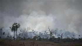 亞馬遜雨林,火災,秘魯,哥倫比亞,高峰會,保護(圖/美聯社/達志影像)