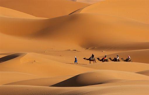 2shutterstock_85892551-Camel Caravan on Africa desert .jpg