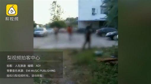 中國大陸,女童遭流浪狗攻擊咬傷(圖/翻攝自梨視頻)
