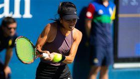 錦標賽,溫布頓網球,史翠可娃,美網,謝淑薇