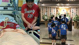 單親媽媽遭車撞腦死 捐12器官部位 遺愛人間(圖/翻攝畫面)