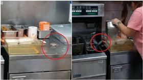 工作台上「米奇」亂竄!女鐵盒倒扣想抓 牠下秒跳油鍋求生(圖/翻攝自YouTube)