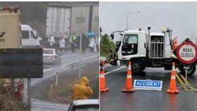 紐西蘭,中國觀光客,翻車,多人喪命,重大車禍