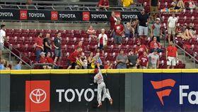 ▲費城人中外野手海斯利(Adam Haseley)爬上全壘打牆沒收全壘打。(圖/翻攝自MLB官網)