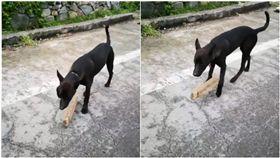 當你在路上,看到一隻狗狗脖子上被綁一塊木板時,你會怎麼做?一名網友就在臉書PO文,表示在路邊看到一隻黑狗脖子上竟吊著一塊木板,走起路來好像相當吃力,模樣令人十分心疼,因此他就將黑狗的樣子拍下來PO上網,想詢問其他網友知不知道狗狗被綁木板的原因,許多人看了之後也認為這是虐待動物的行為,但多數網友都認為,飼主會將他這樣綁是因為「這隻狗很兇,會亂追人或車子」。(圖/翻攝自爆怨公社)