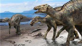 日本科學家發現一種新恐龍「神威龍」化石,研究人員表示,這意謂日本或東亞曾經有過一個獨立的恐龍世界以及一段獨立演化過程。(圖取自科學報告期刊網頁nature.com)