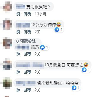 T妹 Tiffany Chen 圖/臉書
