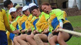 中華拔河代表隊,愛爾蘭,金牌(圖/翻攝自中華民國拔河運動協會)