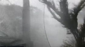 颱風「法西」。(圖/翻攝自推特)