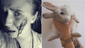 西班牙一名素食主義份子從農場「救出」了16隻兔子之後,導致接近100隻小兔子死亡。(圖擷自mythical.mia IG