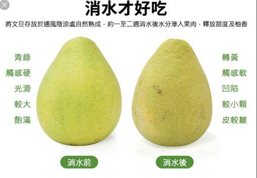 中秋節,文旦,柚子,消水,辭水(圖/翻攝網路)