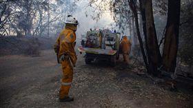 (澳洲野火燒不停!千名打火弟兄與惡火搏鬥 奮勇救民眾家園) 澳洲,雪梨,火災,森林 (圖/翻攝自 Queensland Fire and Emergency Services - QFES 臉書) https://www.facebook.com/QldFireandRescueService/