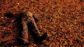 屍體,森林,叢林,樹林(圖/翻攝自Pixabay) https://pixabay.com/illustrations/man-dead-death-male-horror-danger-2480068/