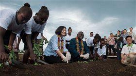 2017年11月總統蔡英文抵達索羅門群島,蘇嘉瓦瑞總理(Manasseh Sogavare)親自招待。(圖/翻攝自總統府官網)